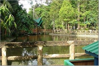 посещение заповедника Sungai Liang