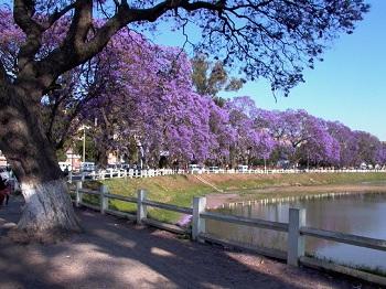 столица острова - Антананариву