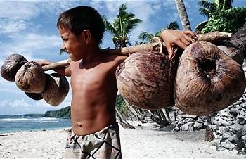 Особенности поведения на Американском Самоа