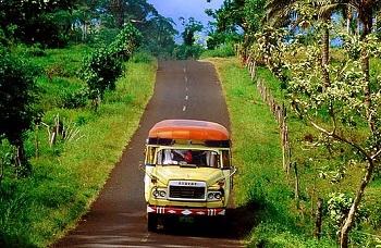 Ездить по дорогам Американского Самоа следует аккуратно, соблюдая правила дорожного движения