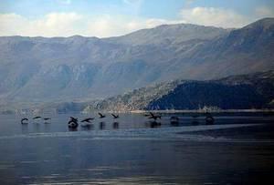 На второе великое озеро Македонии – Большую Преспу, можно попасть двумя путями