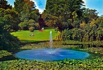 Вход в ботанический сад бесплатный