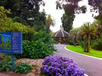 Посетители сада, прогуливаясь по удобным тропинкам, легко могут повстречать кроликов, лис и опоссумов, а около воды – черепах