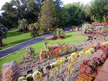 Замечательный сад – это украшение Мельбурна