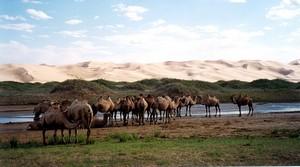 Гобийский Национальный парк Гурвансайхан