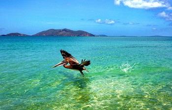 прокатитесь по острову Ангилья
