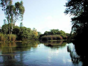 Река Вааль - излюбленное место отдыха жителей Северо-западной провинции