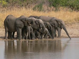 Национальный парк Керан