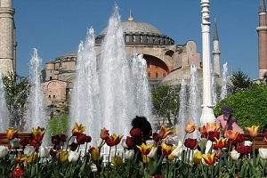 Стамбул – столица тюльпанов