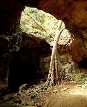 Ангилья имеет достаточно обширную систему пещер и карстовых провалов