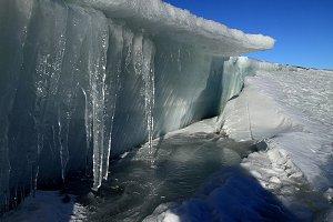 Оазис Антарктиды