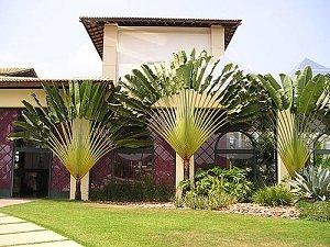 Отель в Коста де Сауипе