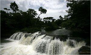 Климат Белиза – тропический пассатный