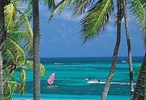 Климат Доминики тропический, влажный, смягчаемый северо-восточными ветрами-пассатами