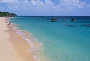 Самый розовый песок можно найти на пляже - Ворвик-Лонг