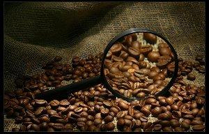 Кофе -одна из самых важных статей дохода Бразилии