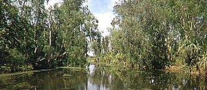 река Николсон
