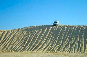 Сафари по пустыне Сахара