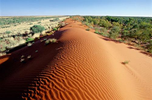 Пустыня Симпсон. Австралия