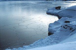 Антарктическая жара