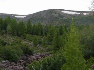 Горы Хэнтэй простираются северо-восточнее Улан-Батора