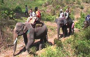 Экотуризм на Шри-Ланке