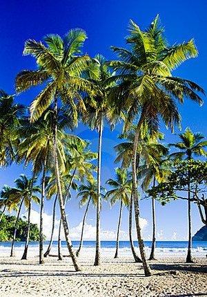 Пляж Маракая растянулся примерно на 1850 м, на протяжении которых простирается пелена белого песка