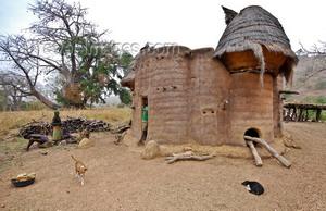 Народные жилища в разных районах страны отличаются по архитектурным формам и строительным материалам