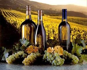 Молдавия - страна с богатейшими винодельческими традициями