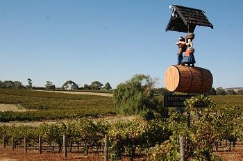Сегодня в Баросса расположено почти 50 винодельческих ферм