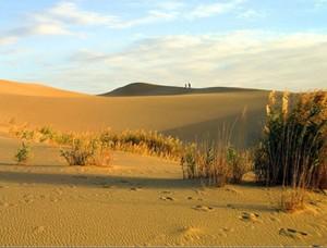 """Название пустыни происходит от монгольского слова """"говь"""", что в буквальном переводе - """"безводное место"""""""