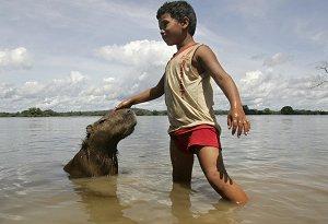 Заповедник индейцев на реке Шингу
