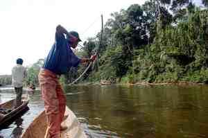 Рыбачить в Боливии можно круглый год, но лучший период с мая по декабрь