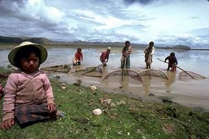 Для того чтобы рыбная ловля на реках Боливии оказалась удачной, вы должны мобилизовать свой ум