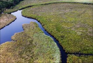 В течение тысячелетий поверхность озера уменьшалась
