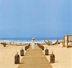 Природа Западной Сахары