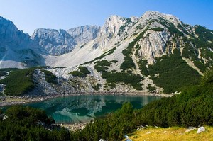 Широкое разнообразие флоры и фауны парка, делает парк одним из немногих ботанически интересных областей в Болгарии