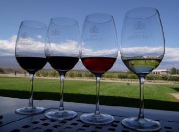 Попробуйте самые изысканные сорта вин