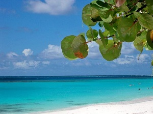 Шол-Бей-Ист является главным берегом Ангильи