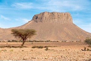 Пустыня Сахара в Алжире