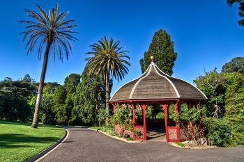 Мельбурнский Королевский ботанический сад