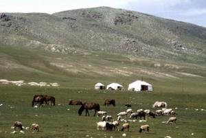 В экономической жизни Монголии земледелие играет второстепенную роль
