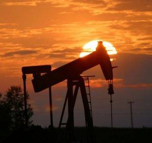 Нефть в Монголии была обнаружена в 1951 г.