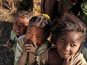 Маленькие жители Мадагаскара