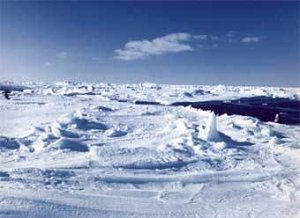 Активное освоение Антарктики