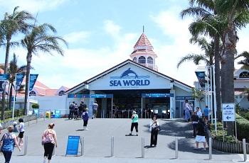 Самый большой в мире океанариум «Мир моря»