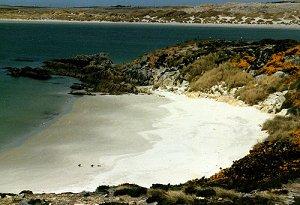 Фолклендcкие острова