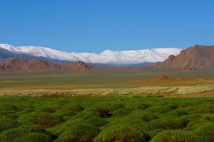 Степная Монголия — это мир без горячего душа, электричества и телефона. «Всё свое — везу с собой» — веками проверенный принцип кочевников