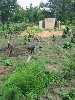 Основная отрасль сельского хозяйства — земледелие