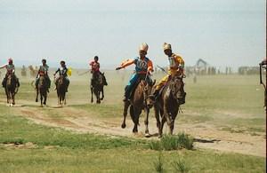 Прежде чем выпустить лошадей на скачки, их тренируют по специальным правилам
